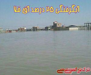 c_300_250_16777215_10_images_71303.jpg