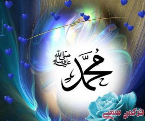 c_300_250_16777215_10_images_mohammad.jpg